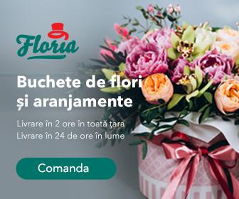 floria.ro%20
