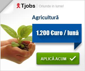 Tjobs.ro