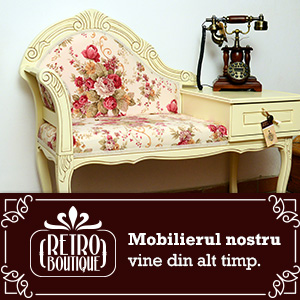 magazin mobila retro boutique