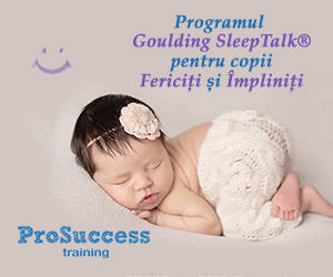 prosuccesstraining.ro