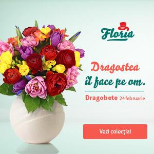 floria.ro